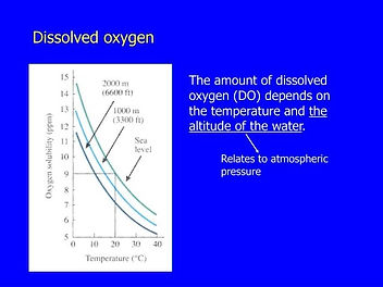 Dissolved Oxygen.jpg