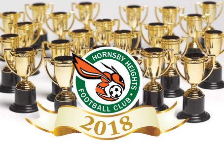 Perpetual Awards for 2018