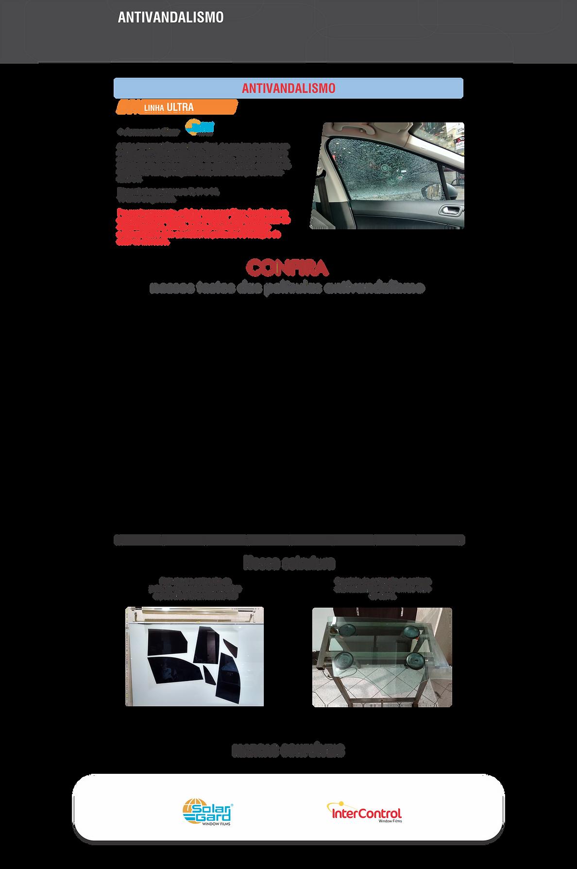 Pagina antivandalismo - site wix 2020.pn