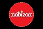 Cobizco logo with outline (2)-01.png