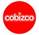 Cobizco Logo-01.jpg