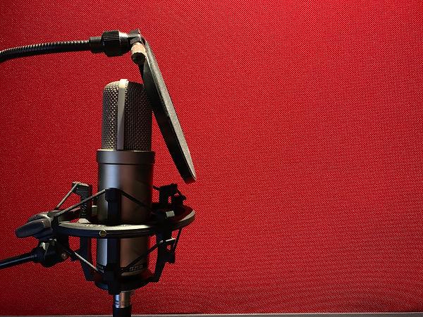Peachtree Sound Microphone.jpeg