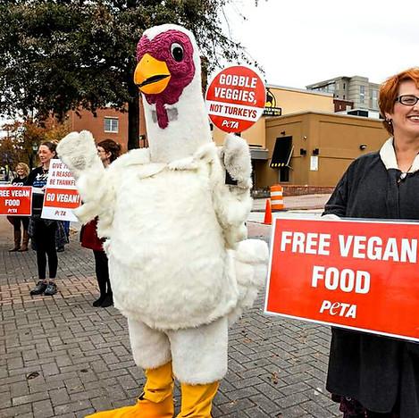 Gobble Veggies Not Turkeys.jpg