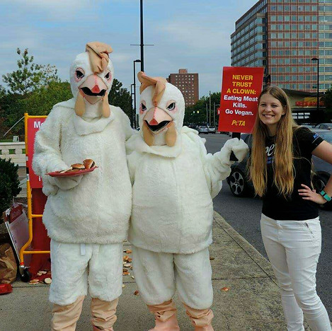 Chickens Protesting McDonald's.jpg