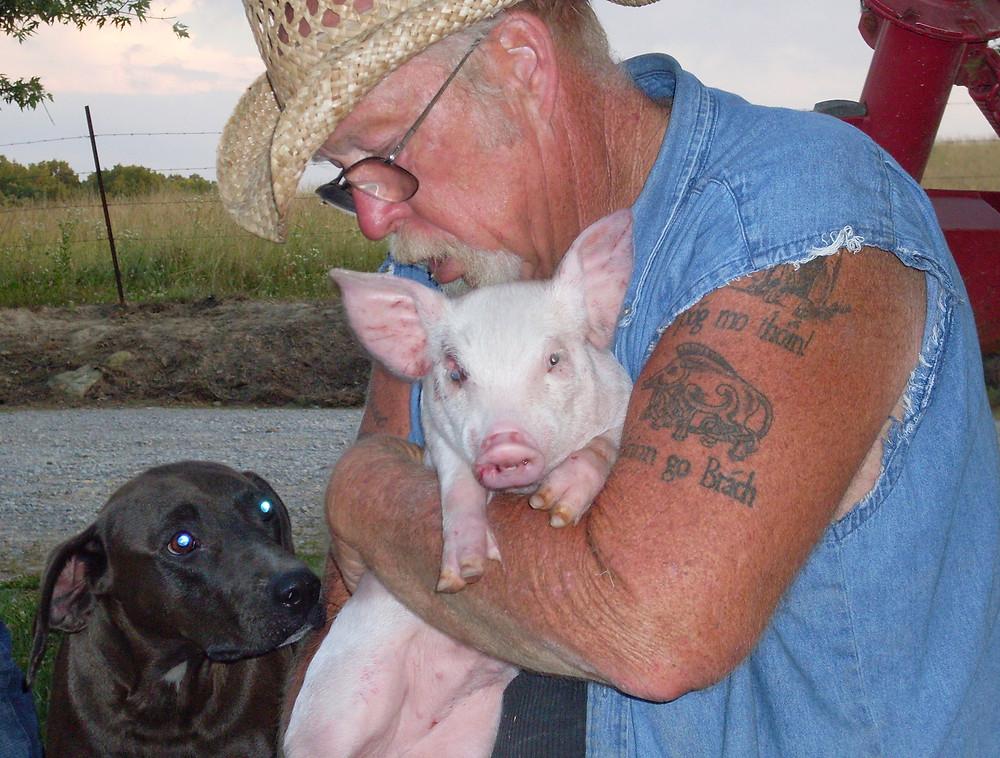 Image: The Pig Preserve