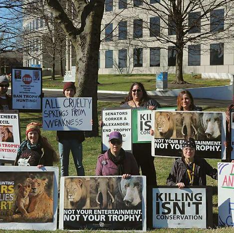 Rally Against Trophy Hunting.jpg