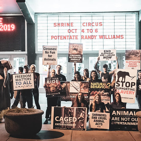 Shrine Circus Protest 2019.jpg