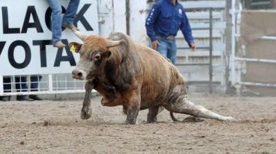 Rodeos: An American Embarrassment