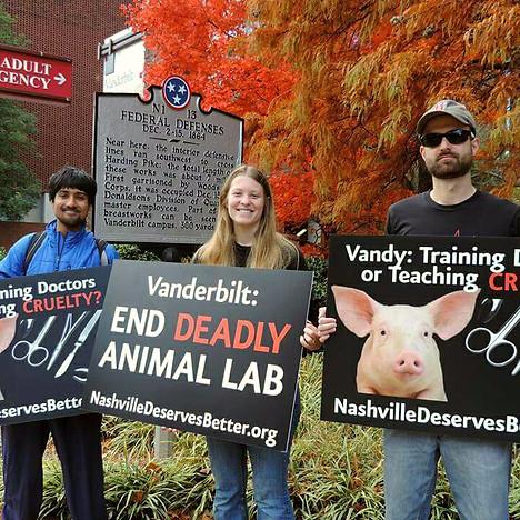 End Vanderbilt's Animal Lab.jpg