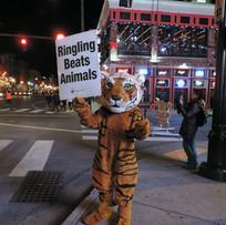 Ringling Beats Animals.jpg