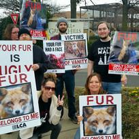 Fur Free Friday.jpg