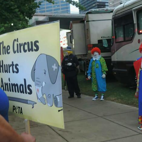 Al Menah Circus Protest.jpg