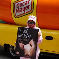 Oscar Mayer Demo.jpg