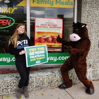 Subway Vegan Meatballs_edited.jpg