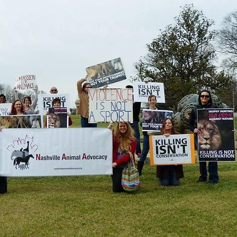 Rally For Cecil.jpg