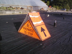 caution-chicken-crossing_11430746994_o