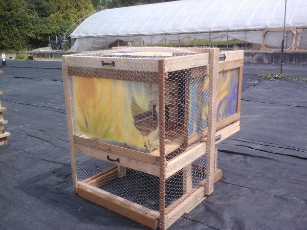 coop-n-cage-by-rdh-building-sciences_11430771346_o