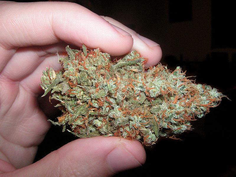 Florida marijuana smoking ban