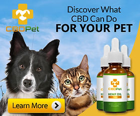 Canna {et cbd for dogs and cats