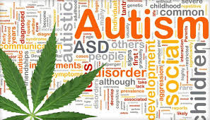 Israel's Booming Medical Marijuana Industry Now Offers Hope To Autism Patients