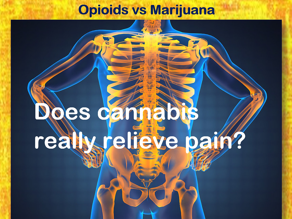 Opioids vs Marijuana to treat pain