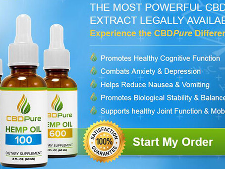 Buyers Guide CBD Oil for Sale