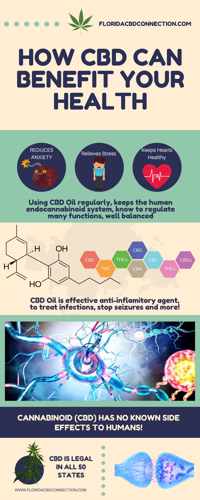Best CBD Health Benefits in humans