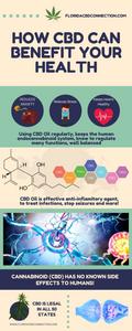 Best CBD Health Benefits in humans