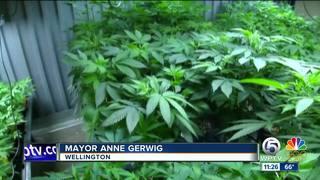 Wellington, FL Says Yes to Medical Marijuana Dispensaries