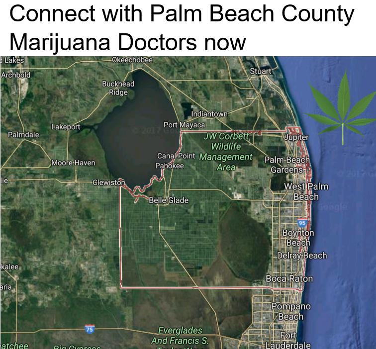 Palm Beach County Marijuana Doctors