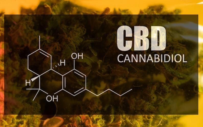 high cbd marijuana strain for seizures
