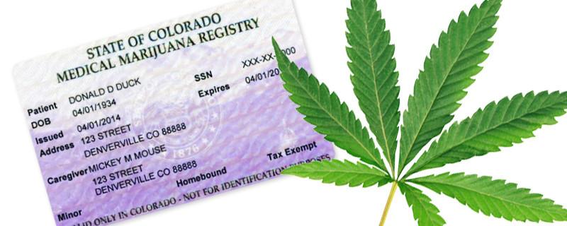 Florida Meical Marijuana