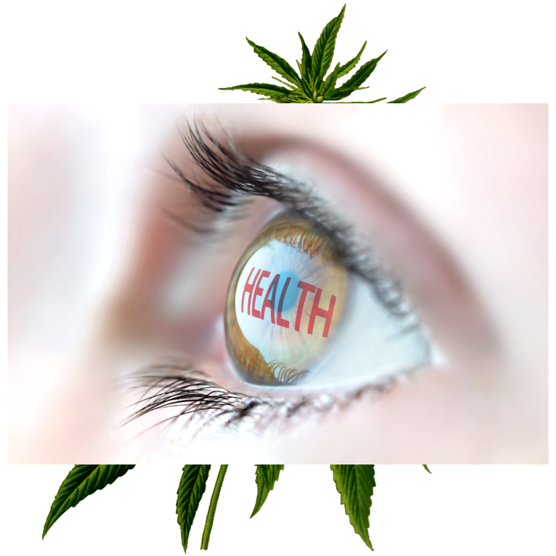 9 Must Know Health Benefits of Cannabis Oil - flbest420