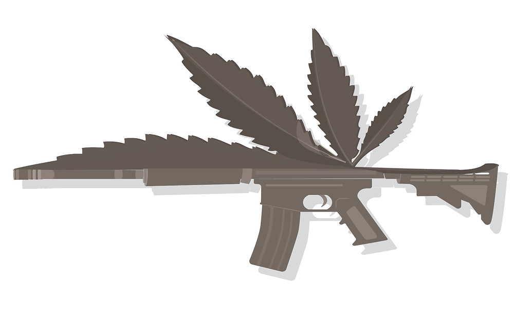 Florida weed and guns - medical marijuana vs gun ownership