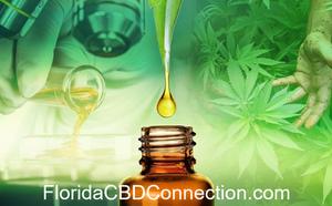 is cbd oil legal in florida 2017