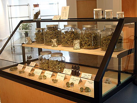 Florida Medical Marijuana | Florida Cannabis Doctors
