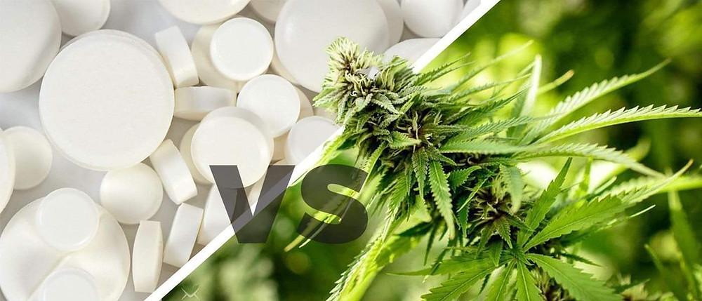 Marijuana vs Opioid to treat illness