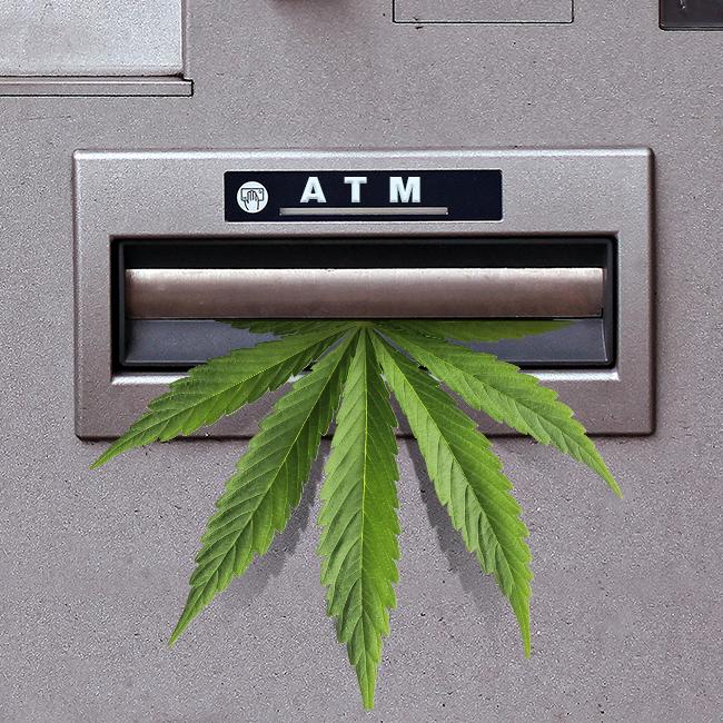 florida marijuana banks