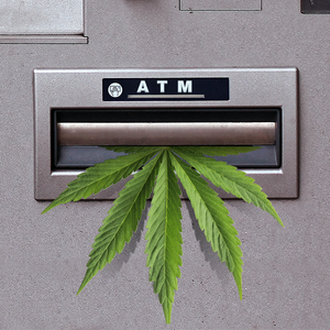 florida marijuana banks