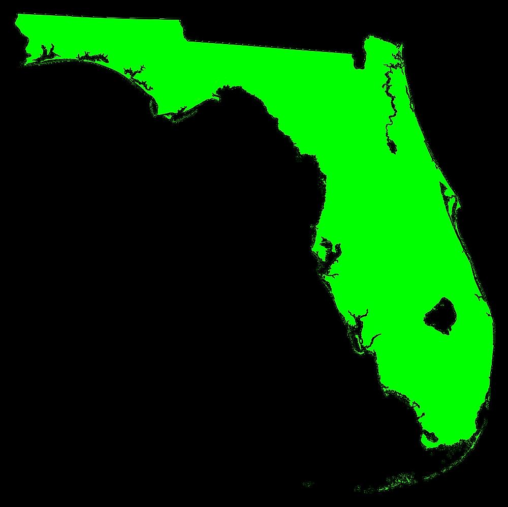 CBD gummy bears in Florida