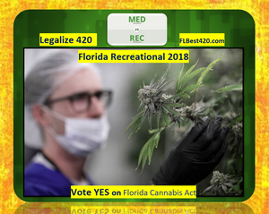 Florida recreational cannabis in 2018