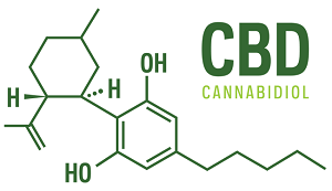 CBD for humans and pets