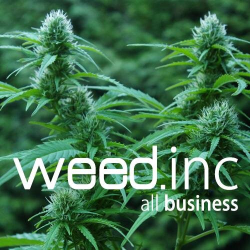 Florida's Green Rush Industry Investments