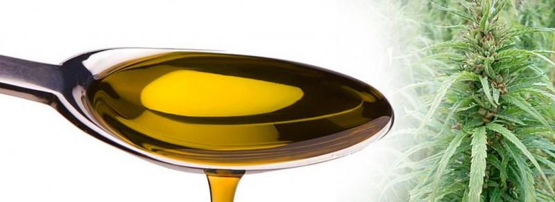 Organic cbd oil extracts