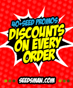 Cannabis Seeds | Cannabis Seeds for Sale