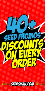 indoor hydroponic growing system seeds