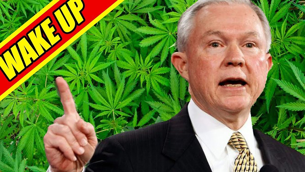 Jeff sessions and marijuana laws - gun ownership 2018