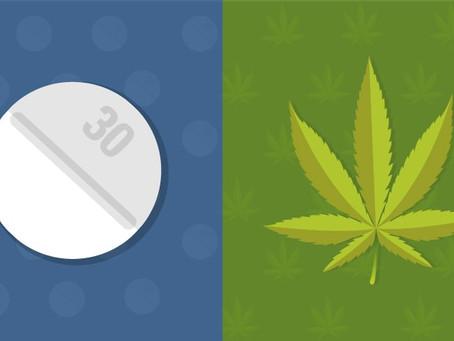 How Medical Marijuana Can Help Treat Opioid Addiction