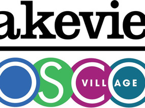 Update & Focus Groups for the Lakeview and Roscoe Village Chamber of Commerce Merger