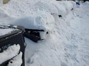 Streets & Sanitation Update: Snow & Garbage Removal